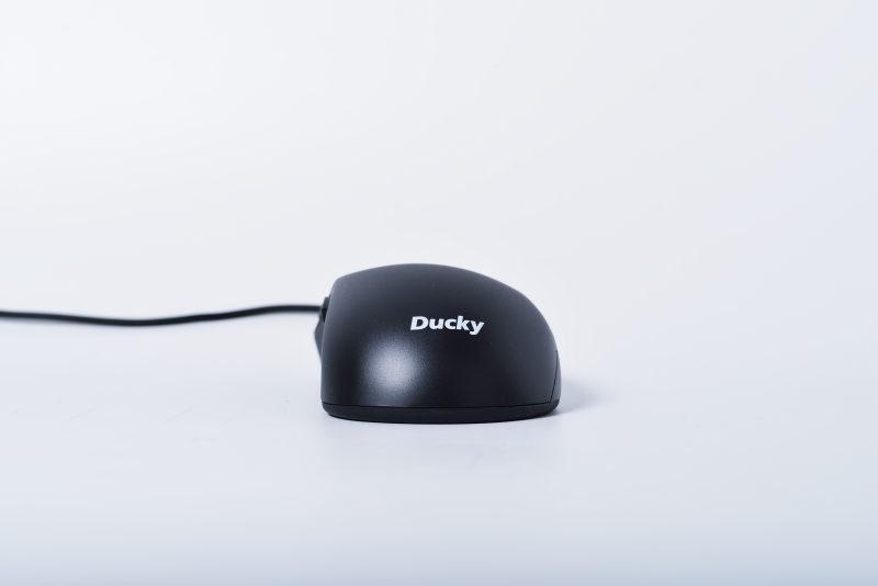 ducky-secret-6