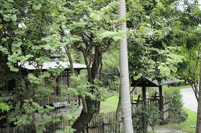 taipe-guest-house
